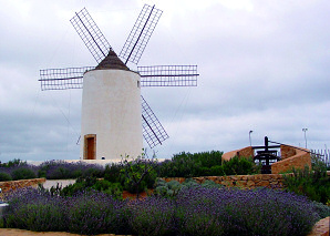 Sa Punta des Molí